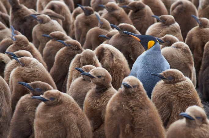 Stand out with digital marketing